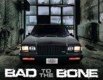 bad to the bone 2.jpg
